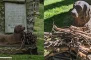 「忠心汪」 為陪伴主人,長眠于「公園」100年,人們帶著狗狗最愛的玩具看望牠