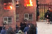 男子公寓內「自焚」致小貓受困,火勢兇猛直燒貓尾,從二樓跳下被接住,網友:太驚險!