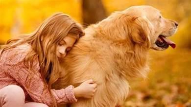 狗狗有這4種行為,其實是在默默守護你,你沒白養牠